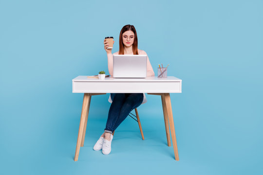 Portrait of her she nice attractive concentrated focused girl sitting in chair daily task hr manager designer self development at work place station isolated over bright vivid shine blue background