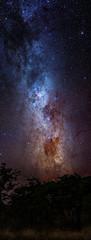 Milky way, Etosha National Park, Namibia, Africa
