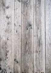 Old grey wood texture. Background old wooden panels.