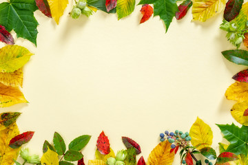 Autumn composition. Frame made of autumn falling leaves on yellow background. Flat lay, top view, copy space Wall mural