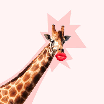 Giraffe's head with shadow against it kissing by the big red female mouth. Negative space to insert your text. Modern design. Contemporary art collage. Concept of beauty of nature and animals.