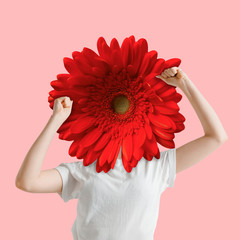 Female body in white shirt headed by bright red flower on coral background. Negative space to...