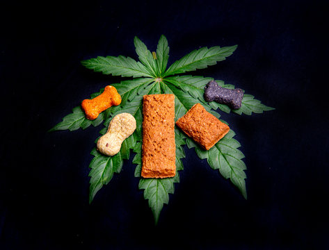 CBD Dog treats and cannabis leaves isolated over black