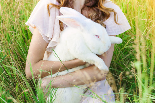 White rebbit in woman hands, cruelty free,  not tested on animals concept