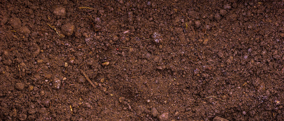 Fertile soil with peat - panoramic background for agriculture Fotomurales