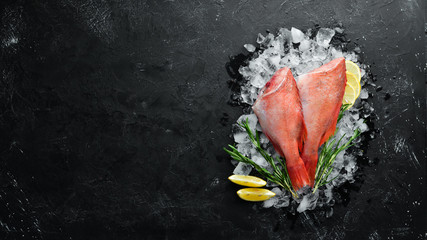 Seafood raw snapper on ice. Top view. Free space for your text.
