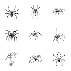 Spider icon set. Simple set of 9 spider vector icons for web design isolated on white background