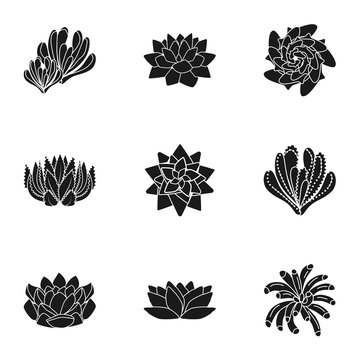 Succulent icon set. Simple set of 9 succulent vector icons for web design isolated on white background