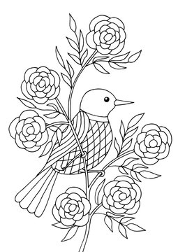 Bird sitting on a branch, coloring page