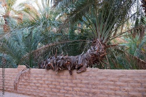 Dating στο Al Ain ΗΑΕοφέλη της χρονολογίων μια λατίνα
