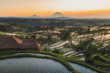 Famous Bali landmark Jatiluwih rice terraces. Beautiful sunrise view of green hills and mount Agung on horizon. Wanderlust concept and nature background.
