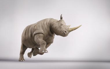 Rhino in studio Wall mural