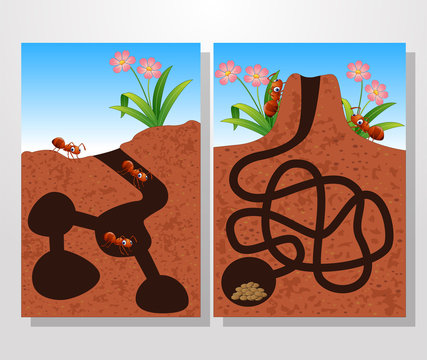 Cartoon ants colony collections set