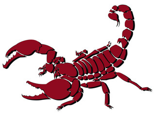Red vector scorpion illustration for logo and tattoo