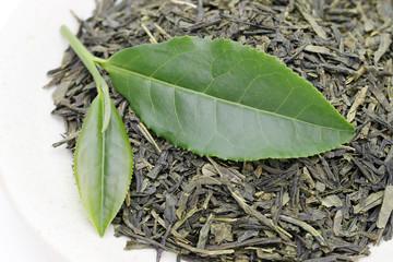 お茶 お茶の葉