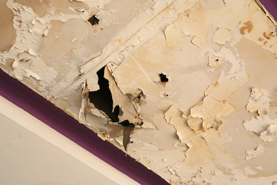 Ceiling panels house damaged from rainwater leakage.