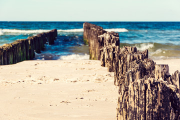 Fototapete - wooden breakwaters on the sea beach