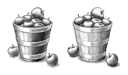 Apple in basket hand drawing vintage style black and white clip art isolated on white background.Compare of simple and complex lines illustration