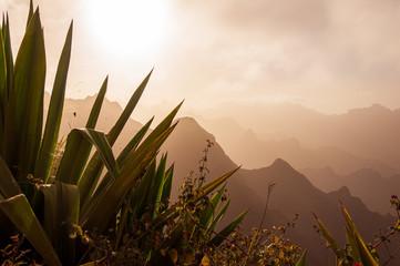 Mountains, tropical plants (Santo Antao Island, Cape Verde)
