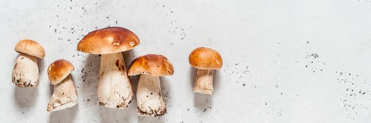Wild Mushrooms, Porcini