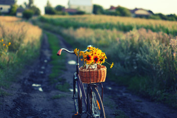 Fototapeten Fahrrad a bicycle with a bouquet of yellow flowers in a basket against nature background