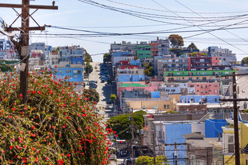 Wall Mural - Street and houses in San Francisco
