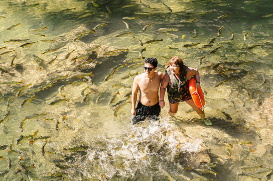 Couple of tourists on the transparent water of a river of Bonito MS, Brazil surrounded by a shoal of Piraputanga fishes. Brazilian ecotourism.