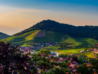 Sunset colors on the vineyards hill in Black Forest
