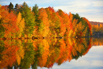 Aluminium Prints Orange Glow Fall landscape Quebec province Canada