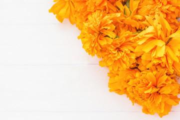 flor de cempasuchil, mexican flowers in Day of the Dead México