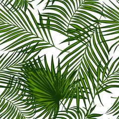 Poster Tropische Bladeren Abstract exotic plant seamless pattern. palm leaves wallpaper.