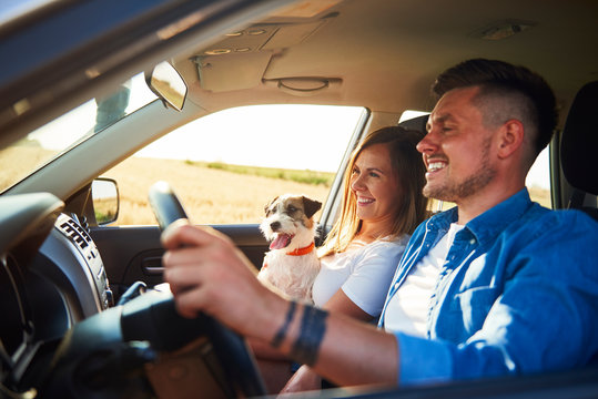 Cheerful couple and their dog traveling by car in summertime