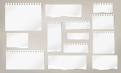 Set of torn white note, notebook lined and blank paper pieces stuck on light brown background. Vector illustration