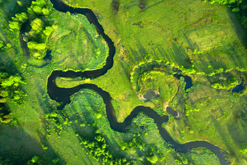 Ecology and environment concept. Green nature from above. Aerial view on river landscape. Healthy...