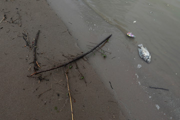 Dead fish lies on the bank of Mekong River in Nakhon Phanom