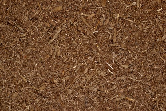 Dark brown wood chip mulch scattered thickly in a landscaped garden area.