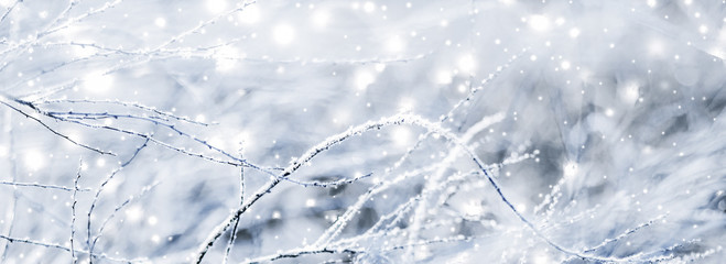 Winter holiday background, nature scenery with shiny snow and cold weather in Christmas time