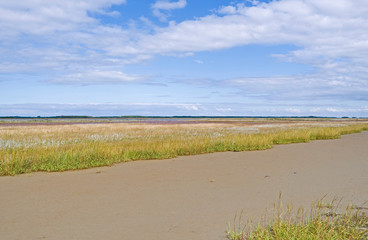 Laesoe / Denmark: Dry fallen tidal creek at the edge of a salt marsh on Kringelroen in the south of the Kattegat island