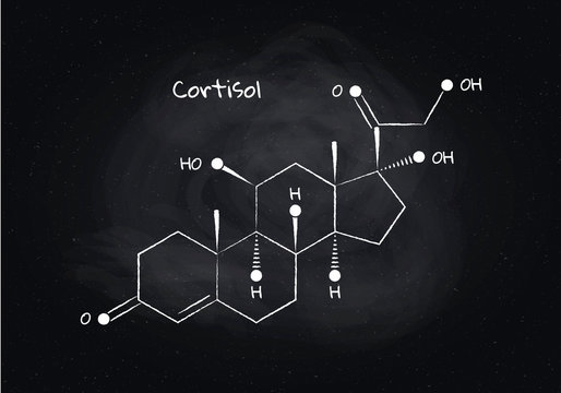 Vector cortisol structure banner illustration. Hormone Associated with adrenal response system and sleep. White chalk lines isolated on board background. Design element for pharma, education, medical.