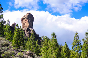 Roque Nublo volcanic monolith rock surrounded by the pine trees with the blue sky and white clouds in the background. Relaxing trekking view in the center of Gran Canaria municipality Tejeda Wall mural