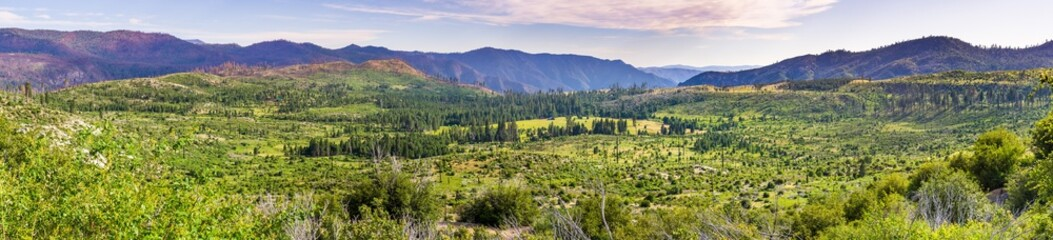Panoramic view of beautiful green meadows and forests in Yosemite National Park, Sierra Nevada mountains, California Wall mural