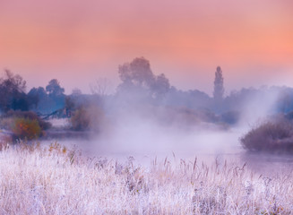 The first frosts in the autumn days. Grass and flowers in hoarfrost on the river bank in the fog in the early morning. Beautiful morning view with grass in hoarfrost.