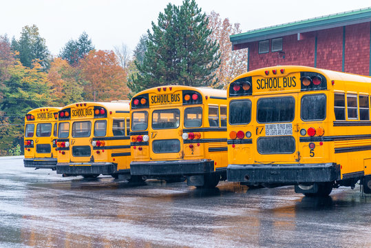 Row of school buses aligned and parked