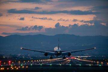 Tuinposter 大阪国際空港に着陸する飛行機