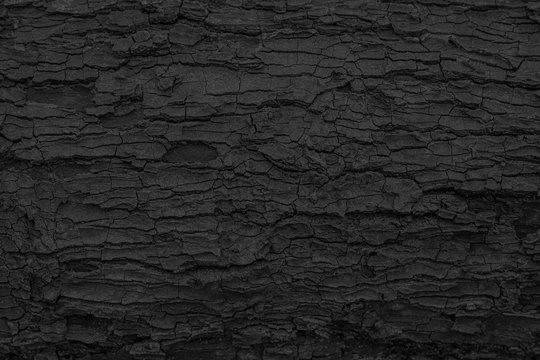 Burnt wooden texture background. Rough black wood surface caused by burning fire. Dark material made from coal or charcoal.