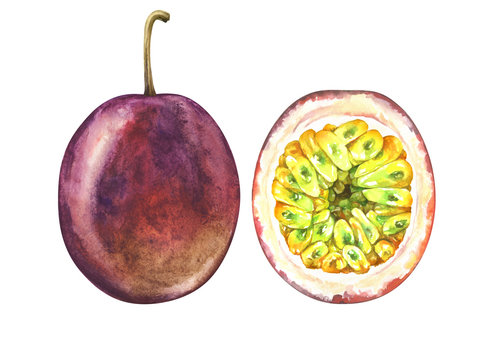 Set of ripe passion fruits isolated on white. Watercolor illustration.