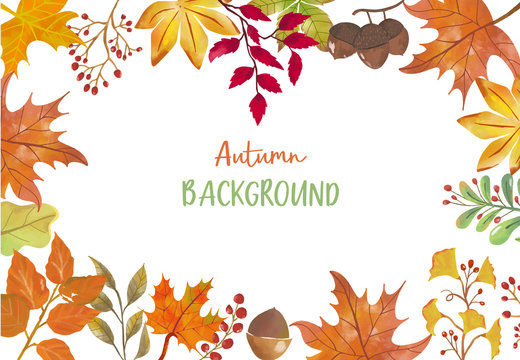 Collection of autumn background set with leaves,maple,acorn,frame.Editable vector illustration for birthday invitation,postcard and website banner