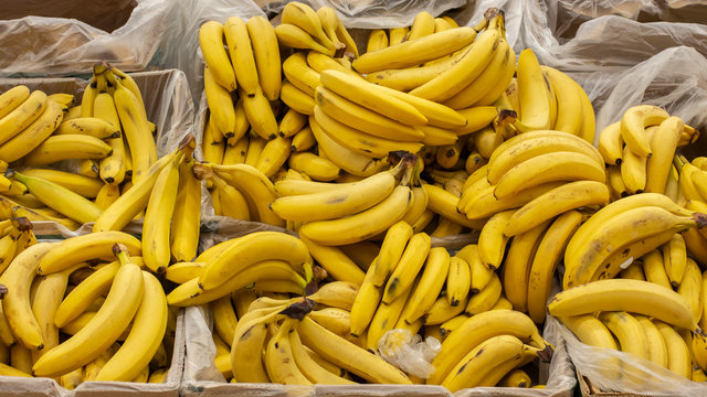 Ripe yellow bananas packed in boxes on the counter of a market supermarket. Background Wallpaper Banner