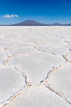 Structure of the salt crust, Salar de Uyuni, Altiplano, 3670 m above sea level, Bolivia, South America