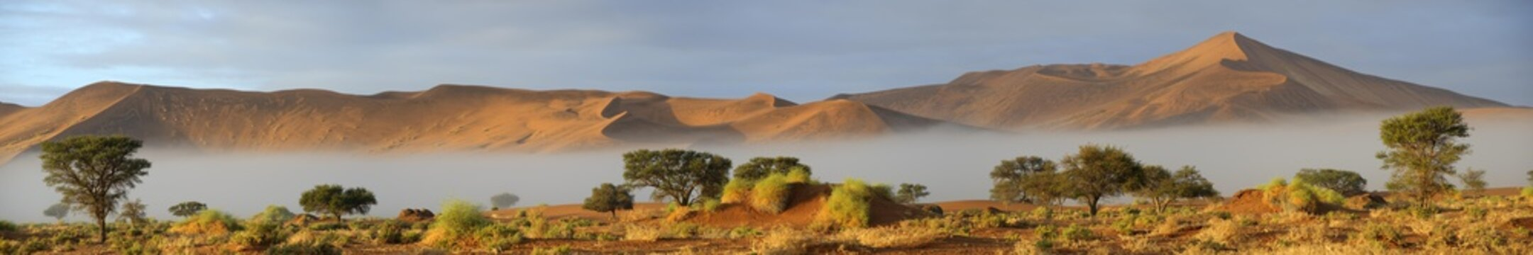 Morning fog and sand dunes at the Sossusvlei in the Namib-Naukluft National Park, Namibia, Africa